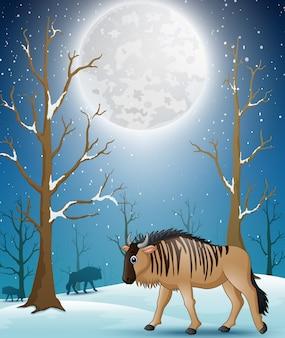Gnous de dessin animé sur la forêt d'hiver