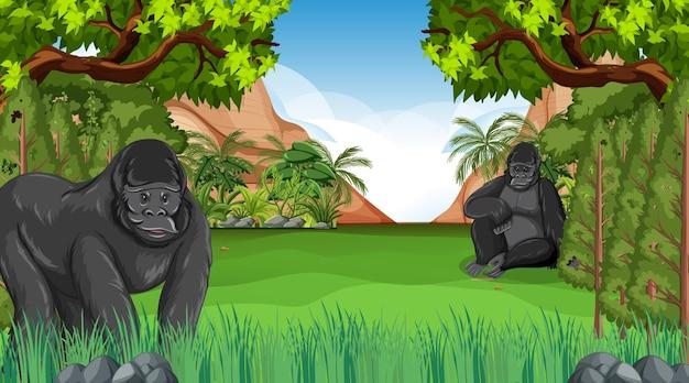 Gorille Dans Une Scène De Forêt Ou De Forêt Tropicale Avec De Nombreux Arbres Vecteur Premium