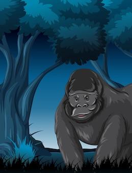 Un gorille en forêt