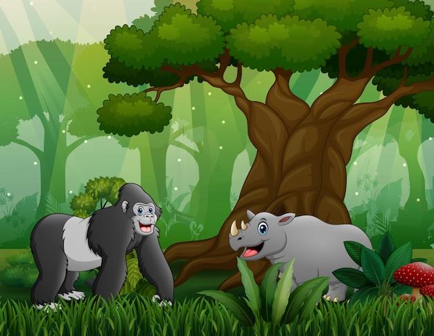 Gorille avec rhinocéros vivant dans le bois