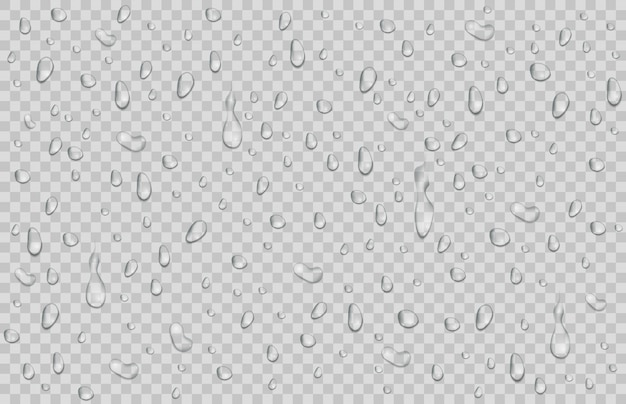 Gouttes d'eau, rosée tombe. gouttes de pluie ou de douche isolés sur transparent