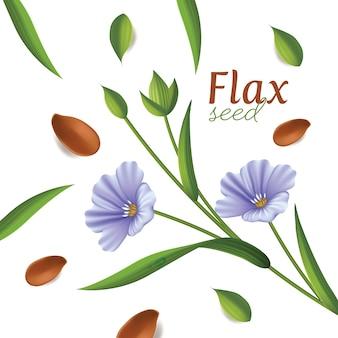 Graines de lin avec des fleurs