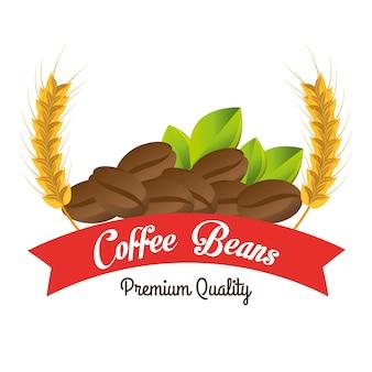 Grains de café de qualité supérieure