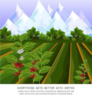 Grains de café qui poussent dans la ferme. champs de récolte illustrations vectorielles
