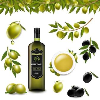 Grand ensemble avec des olives de branche et avec fond transparent, illustration
