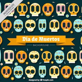 Grand fond avec des crânes mexicains colorés