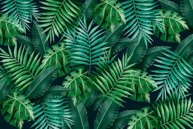 Grand fond de feuilles vertes tropicales
