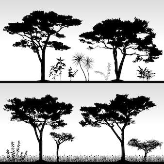 Grand paysage de silhouette d'arbre.
