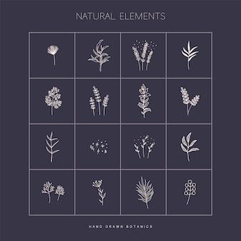 Grand vecteur défini avec des éléments botaniques dans le style dessiné à la main
