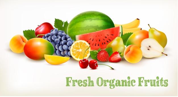 Grande collection de différents fruits frais. vecteur.
