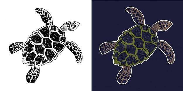 Grande mer océan tortue animal sauvage nager lentement dessin monochrome style graphique personnage de dessin animé illustration rétro style vintage. avec motif panzer de beauté sur la conception d'impression d'affiche au dos.