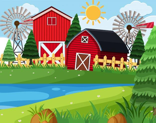 Granges rouges sur la scène de la ferme