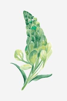 Graphique d'élément de dessin de fleur de lupin vert