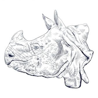 Gravure antique de tête de rhinocéros isolé sur blanc