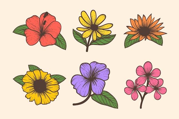 Gravure collection de fleurs dessinées à la main