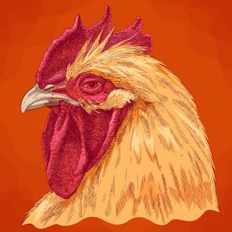 Gravure illustration antique de tête de coq