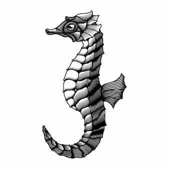 Gravure illustration de cheval de mer dessiné à la main style
