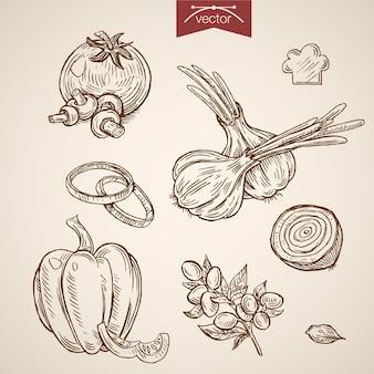 Gravure de légumes dessinés à la main vintage pour la collection de pizza margherita.
