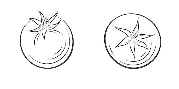 Gravure vintage de tomate isolée sur fond blanc. illustration dessinée à la main pour affiche, étiquette, menu, web. aliments biologiques, sauce, composant de plats. vue depuis le sommet.