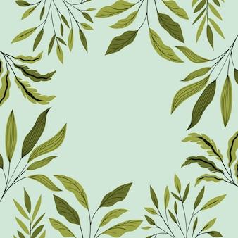 Green leafs décoration cadre naturel