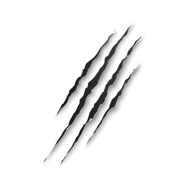 La griffe de bête marque des égratignures ou des traces d'animaux sauvages