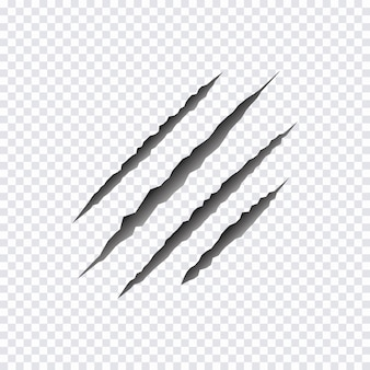 Griffes de griffes d'animaux sauvages. illustration vectorielle.