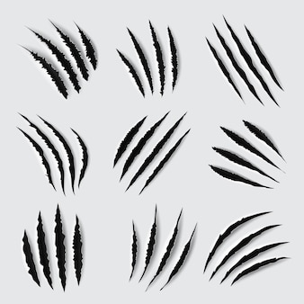Griffes griffes et marques conception de pattes d'animaux traces déchirées