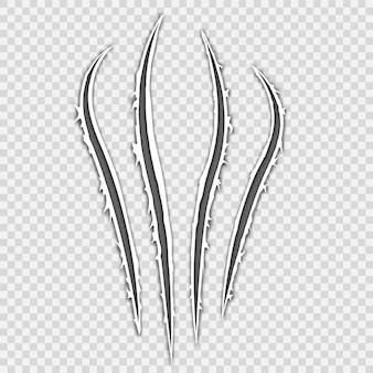 Griffes noires animal scratch scratch track chat tigre rayures forme de patte bête pawvector illustration