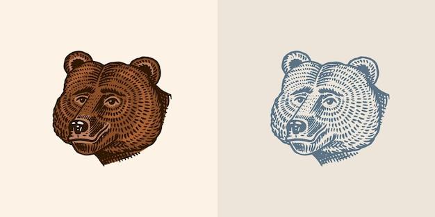 Grizzly brun animal sauvage vintage style monochrome gravé croquis dessinés à la main pour la bannière ou