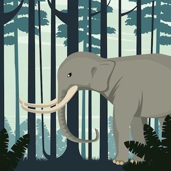 Gros éléphant fort dans la scène de la nature sauvage de la jungle