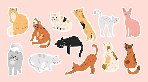Gros lot d'autocollants avec des chats endormis, drôles et mignons. ensemble de broches d'animaux domestiques, collection de minou à laver, illustration de dessin animé plat moderne dessiné à la main dans des couleurs pastel isolé sur fond rose