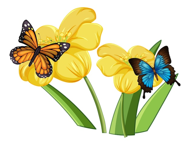 Gros plan de papillon sur les fleurs