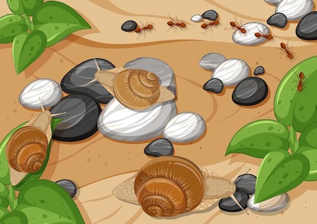 Gros plan sur une scène aérienne avec de nombreux escargots et fourmis