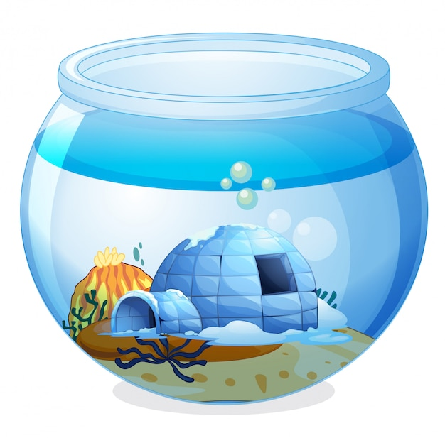 Une grotte à l'intérieur de l'aquarium