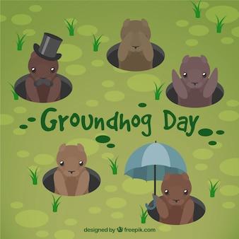 Groundhog antécédents familiaux