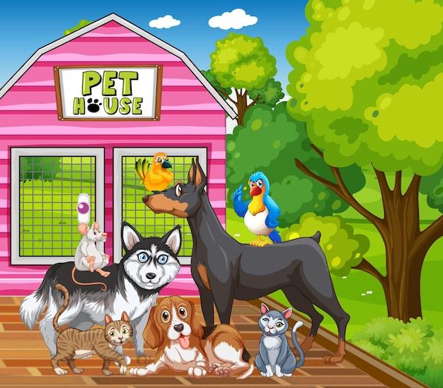 Groupe d'animaux de compagnie dans la scène du parc