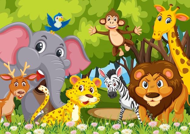 Groupe d'animaux dans la jungle