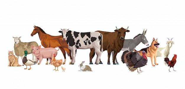 Groupe d'animaux personnages de ferme