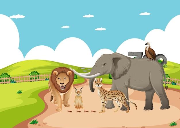 Groupe d'animaux sauvages africains dans la scène du zoo