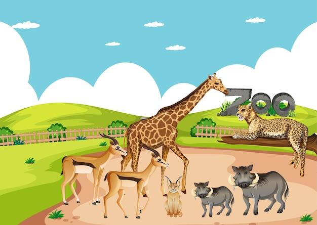 Groupe d & # 39; animaux sauvages africains dans la scène du zoo