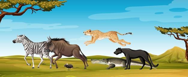 Groupe d'animaux sauvages africains dans la scène forestière