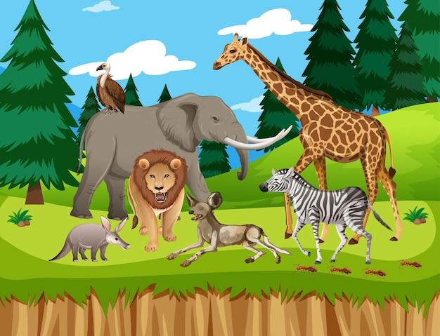 Groupe D'animaux Sauvages Africains Dans La Scène Forestière Vecteur gratuit