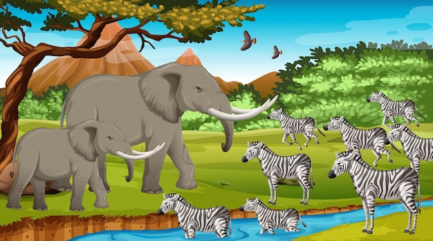 Groupe d'animaux sauvages d'afrique dans la scène forestière
