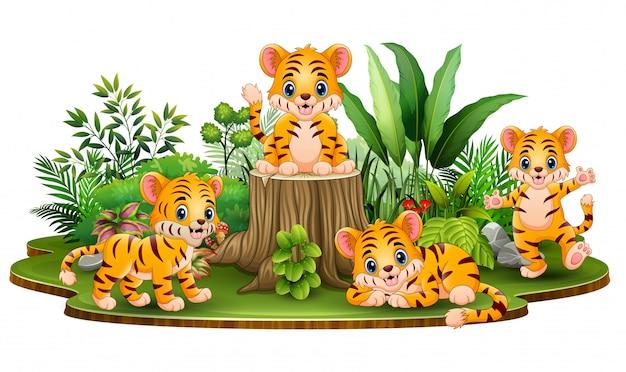Groupe de bébé tigre heureux avec des plantes vertes