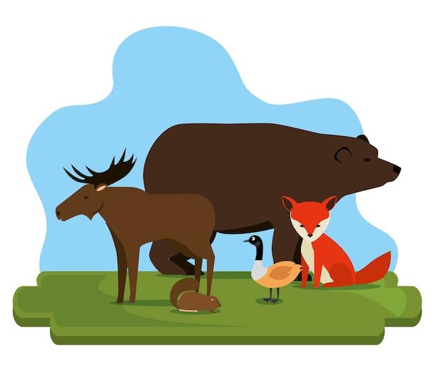 Groupe de culture canadienne d'animaux vector illustration design