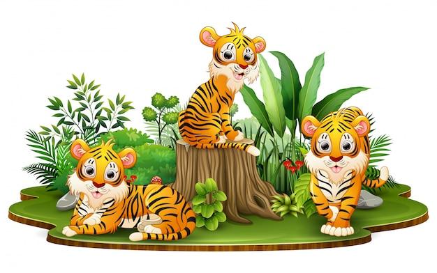 Groupe de dessin animé de tigre dans le parc avec des plantes vertes