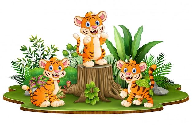 Groupe de tigres heureux avec des plantes vertes
