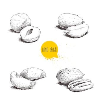 Groupes de noix et pacanes brésiliennes