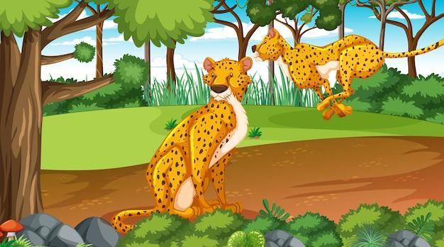 Guépard dans la forêt ou la forêt tropicale pendant la journée