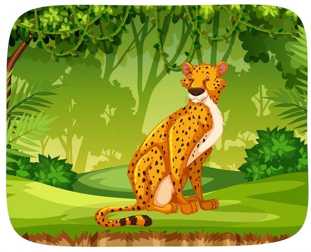 Guépard dans la scène de la jungle